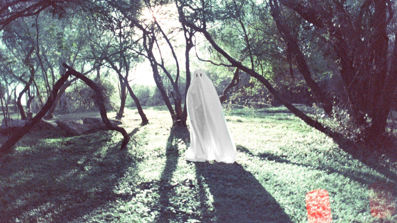 Andrea Inés Fotografía